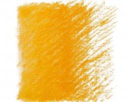 ryski geltona pastele