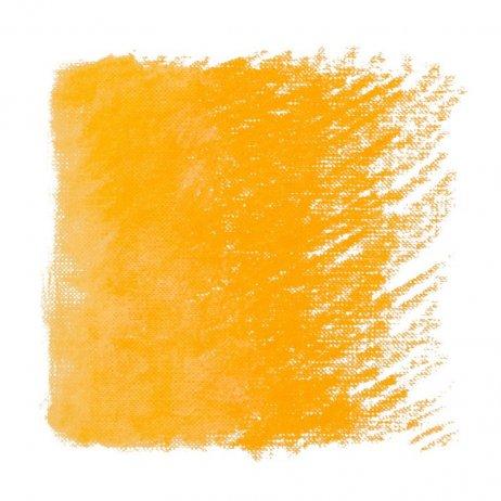 ryski tamsiai geltona pastele